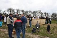 Rekord mange tilskuere så køerne danse i år hos Landmark